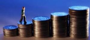 Para Resmi Bütçe