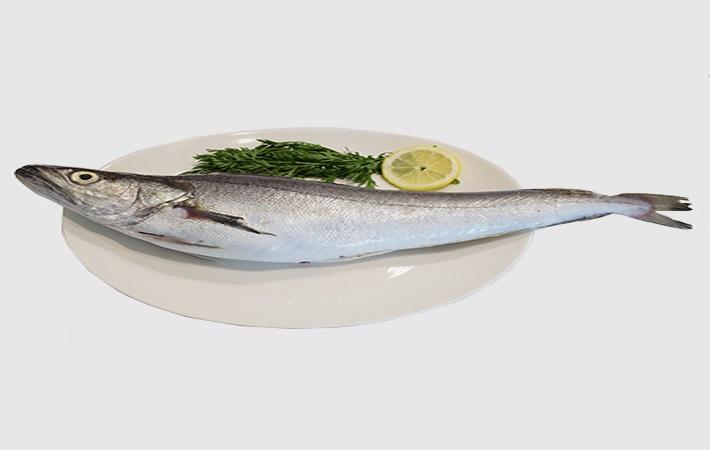 Barlam Balığı Nedir? Barlam Balığı Nasıl Pişirilir?